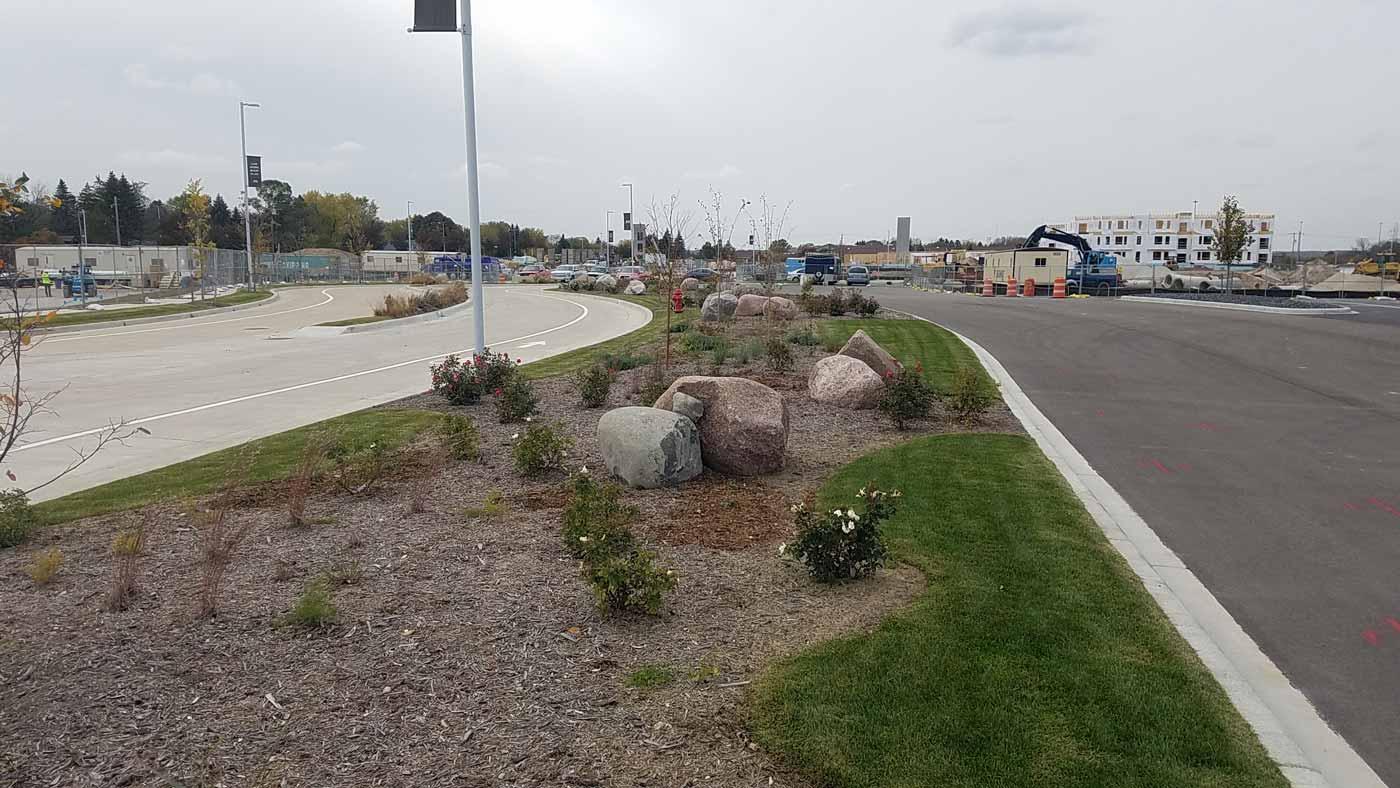 Helianthus | Landscape Architecture Services